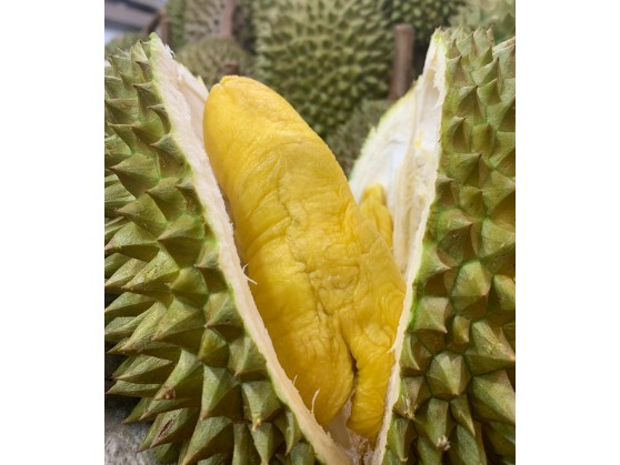 Pahang MSW 彭亨猫山王 ($20/KG)